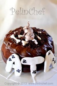 köpekli doğum günü pastası