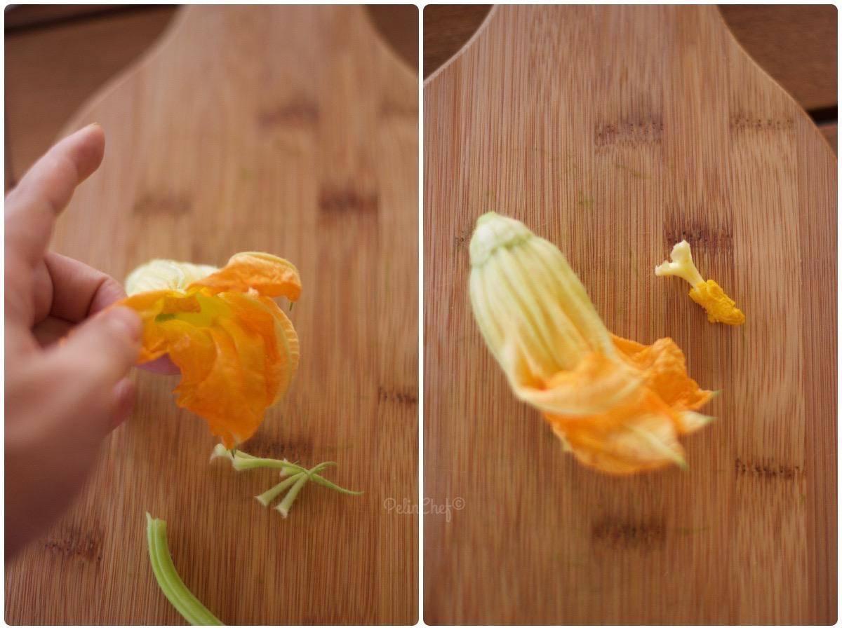 kabak çiçeği nasıl temizlenir3